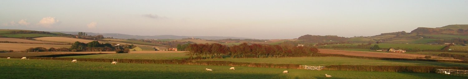 Surrounding countryside, Isle of Wight